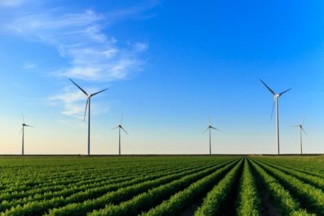 Dinamarca país sostenible