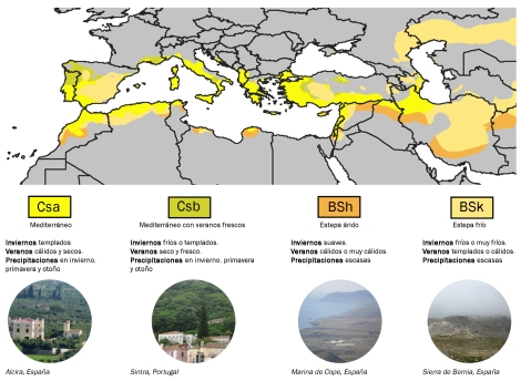 Clasificación climática de la cuenca mediterránea